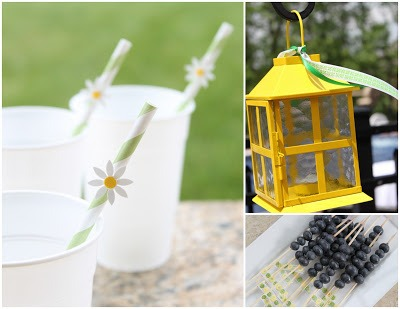 Daisy Straws and Lantern