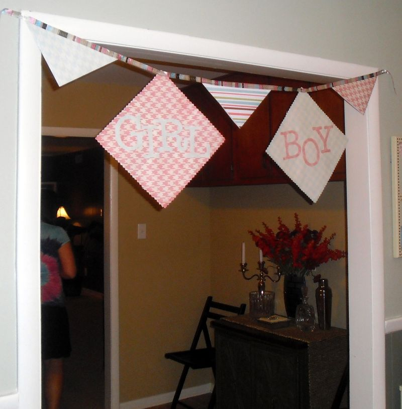 DIY baby gender reveal party banner
