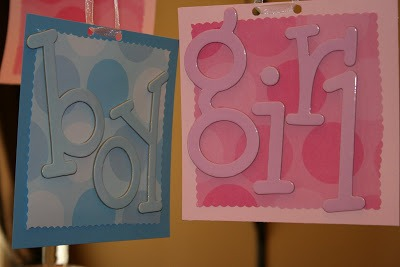 DIY baby gender reveal party blue pink signs