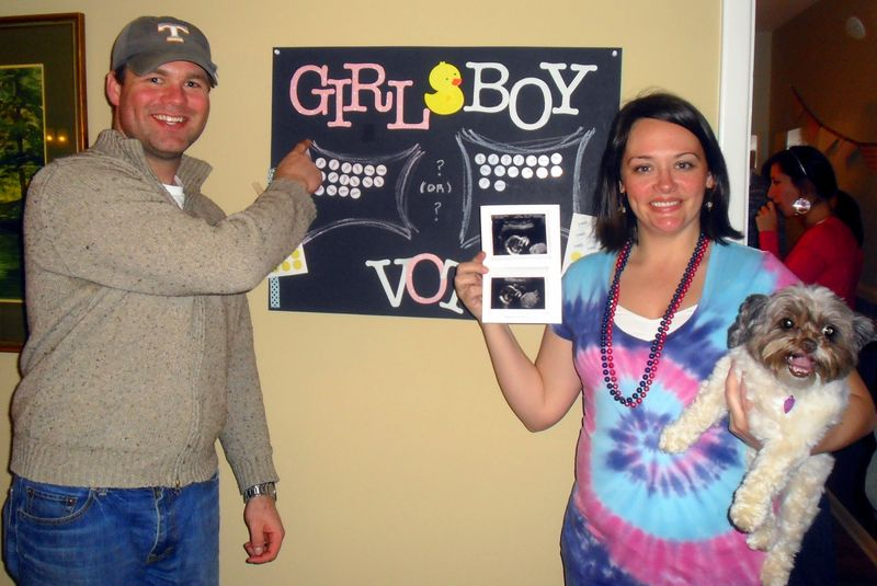 DIY baby gender reveal party its a girl votes