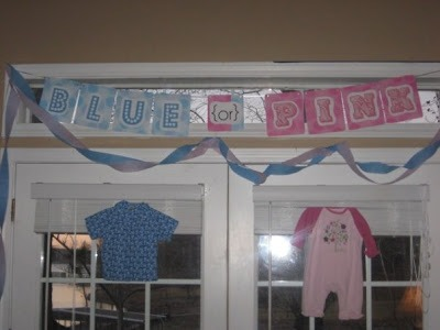 DIY baby gender reveal party pink or blue