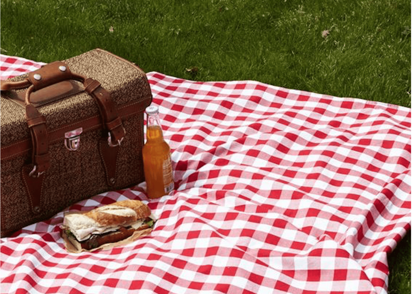 5 Must-Haves for Throwing the Perfect Picnic Party2