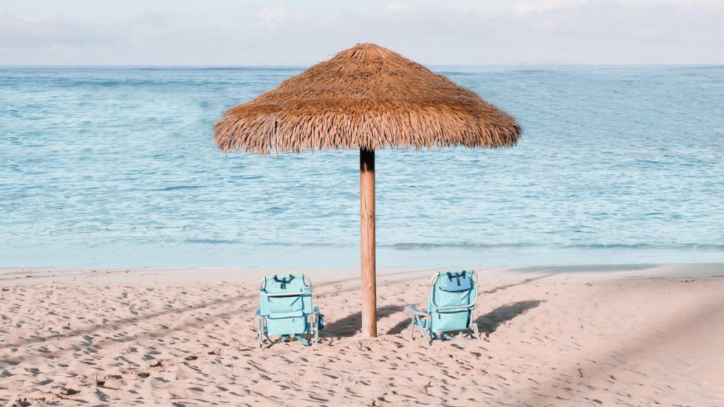 Beach Zoom Party Background | Sendo Invitations