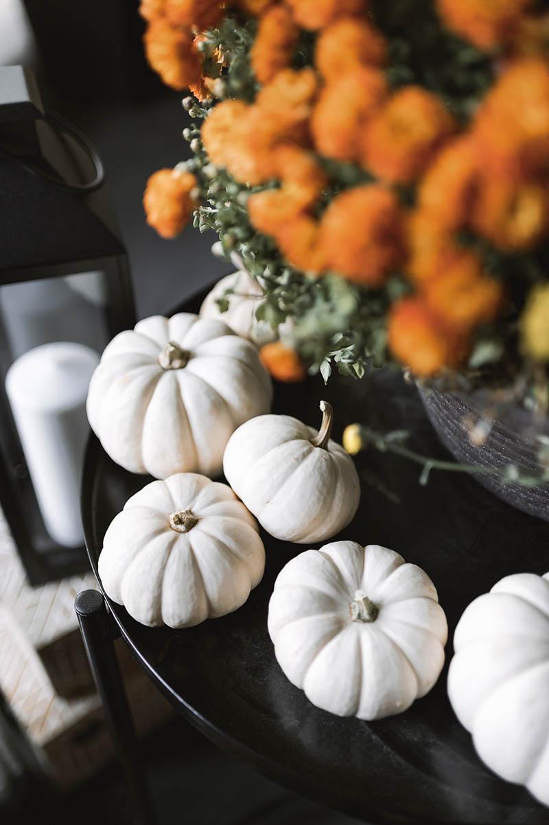 Pizza & Pumpkin Fall Party Theme   Sendo Invitations
