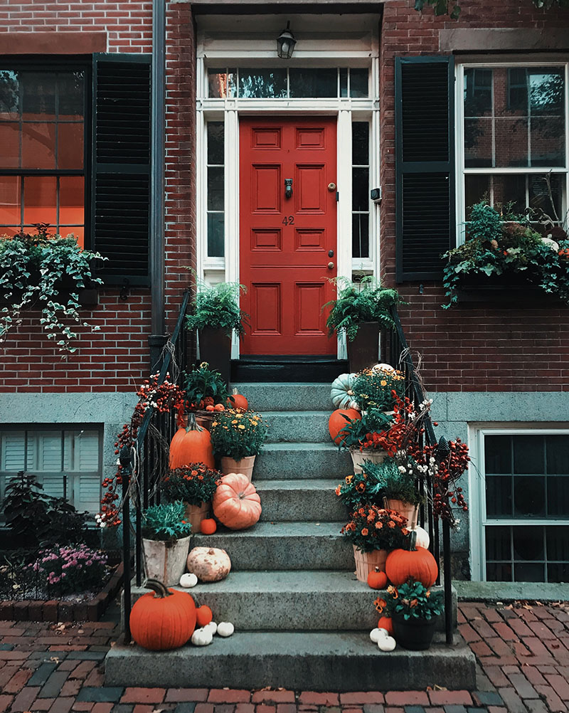 How to be the Most Popular House on Halloween Night | Sendo